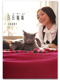 久保田智子の「日日猫猫」